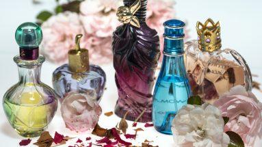 Parfum Dupes: Verschieden Parfümflaschen in einer Reihe